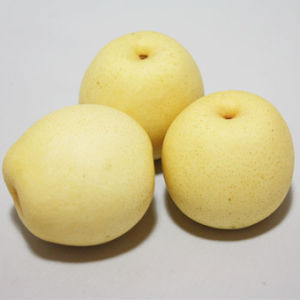 New Crop Top Quality Ya Pear pictures & photos