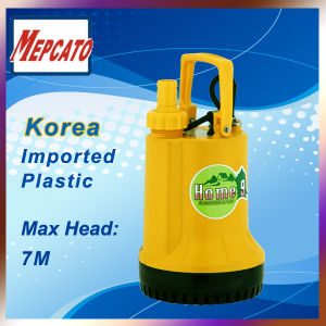 Plastic Water Pump
