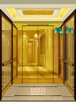 Smr and Mrl Passenger Elevator
