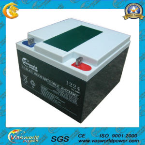Maintenance Free High UPS Lead Acid Battery 12V 24ah pictures & photos