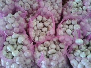New Crop Normal White Garlic pictures & photos