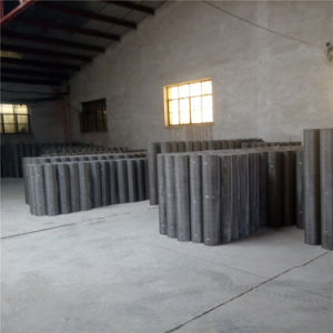 40 Mesh, 0.25 mm Wire, Ss304, 304L, 316, 316L Stainless Wire Mesh Panel pictures & photos