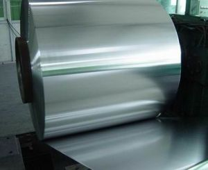 Electrolytic Tinmill Steel or Tin-Plate (T/P)