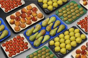 2016 China Supplier Fruit Liners pictures & photos