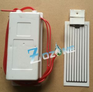 12V 5g Ozone Generator with Ceramic Ozone Plate pictures & photos