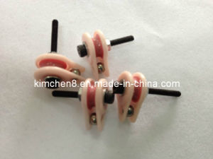 Caged Ceramic Pulley (NT006) Wire Jump Preventer Wire Guide Pulley pictures & photos