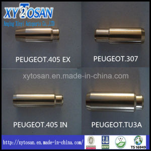 Autoparts for Valve Brass Guide (Peugeot 405&307&Tu3a) pictures & photos