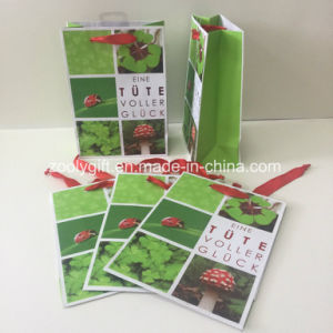 Custom Red Foil Stamping Logo Printing Paper Gift Bag pictures & photos