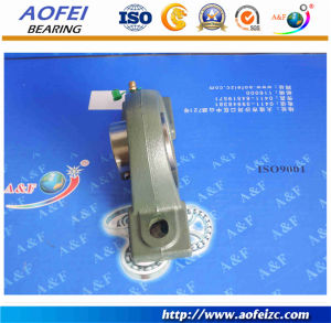 Good quality Insert Bearing/Pillow Block Bearing UCP213 pictures & photos
