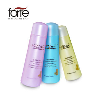 Hair Care Oil Control and Anti-Dandruff Shampoo