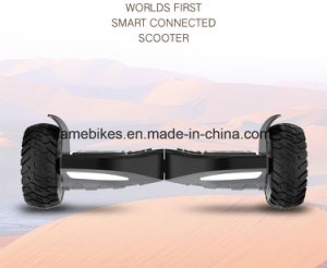 Electric Hover Board with 800W Motor pictures & photos