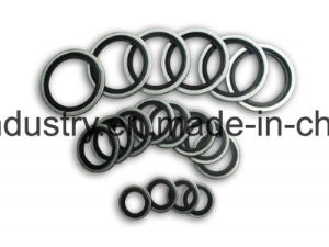 Stainless Steel Bonded Seal Non-Self Centering S316 Bonded Seal pictures & photos