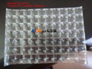 3D Multi Lens Film