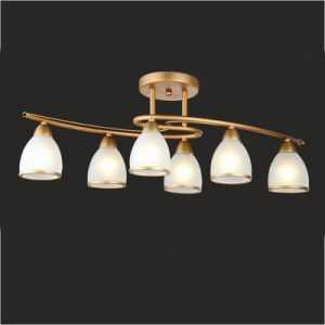 Chandelier Ceiling Light Down Lamps pictures & photos