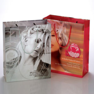 Polypropylene Transparent PP PVC Cosmetic Plastic Packaging Bag (PP-08) pictures & photos