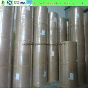 Single PE Coated Paper for Hot Drinking Cup, Noodle Bowl, Icecraem Bowl, Salad Bowl pictures & photos