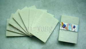 Scouring Pad (P3007) pictures & photos