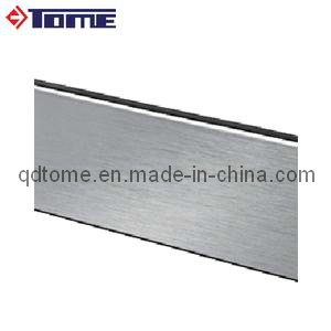 Stainless Steel Cladding-Back for Glass Channel pictures & photos