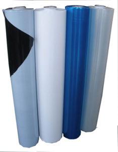 PE Film for Aluminum Composite Panel