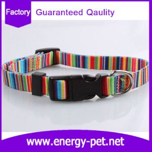 Adjustable Unique Colors and Patterns Dog Collar pictures & photos