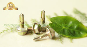 Hex Flange Head Self Tapping Thread Thread White Galvanized Self Drilling Screw with Washer pictures & photos