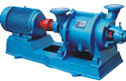 Sz Horizontal Water Wreath Type Vacuum Pump