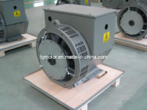 Twg Brushless Generator (TWG) Copper Winding Alternator pictures & photos
