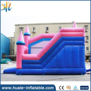 Hot Selling Inflatable Castle, Inflatable Bouncer with Slide pictures & photos