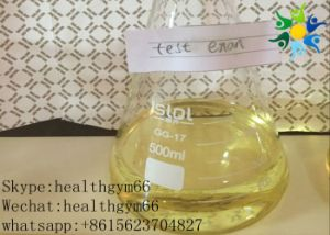 Steroid Hormone Powder Testosterone Enanthate for Muscle Building