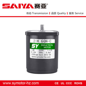 Sy 110V/220V 50Hz/60Hz/6W AC Pinion Shaft Motor (60mm) , AC Motor pictures & photos
