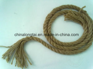 High Tenacity 10mm Hemp Rope (LT) pictures & photos