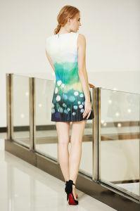Latest New Trendy Border Print Sleeveless Ponte Dress pictures & photos