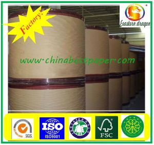 Thermal Paper For Cashier, Thermal Paper Rolls pictures & photos