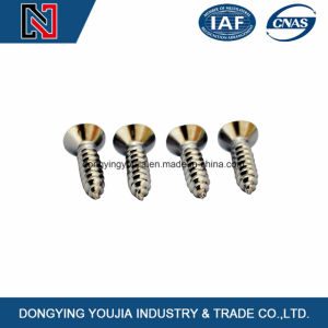 Cross Recessed Countersunk Head Tapping Screws pictures & photos
