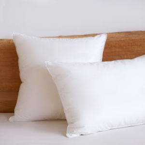White Silk Cotton White Goose Duck Down Feather Cushion and Pillow pictures & photos