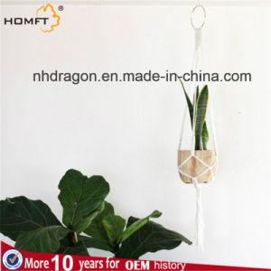 Macrame Plant Hanger Home Deco pictures & photos