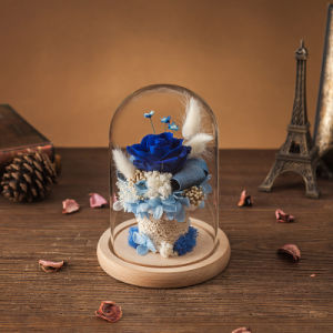 Preserved Flower in Glass for Decoration Gift pictures & photos