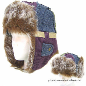Plush Winter Hat pictures & photos