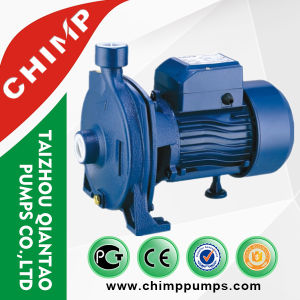 110V/220V Single Phase Electric Powered Clean Centrifugal Water Pump pictures & photos