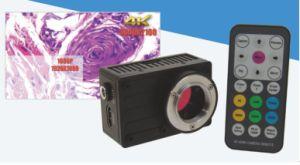 4k Uhd HDMI Digital Camera Adopt Highest Sensitive Mega Pixel Color CMOS Image Sensor pictures & photos