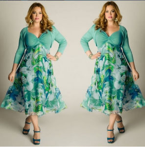 Europe Style Plus Size Chiffon Floral Print Dress (A134)