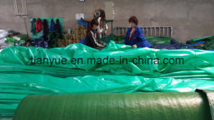 High Quality PVC Double-Coated Tarpaulin for Tent pictures & photos