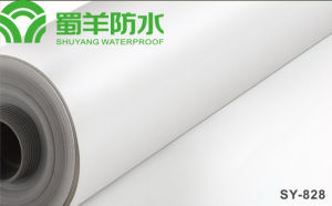 SY-828 TPO Waterproof Membrane Homogeneous Type 1.2mm pictures & photos