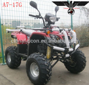 E7-007 Cute Electric Quad ATV Sooter with Ce pictures & photos