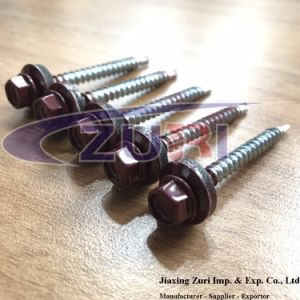 Roofing Screw 4.8X50 Ral 3005 pictures & photos