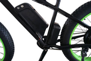 48V 750W Fat Tyre Ebike with Intelligent Controller pictures & photos