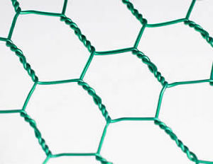 PVC Green Coated Galvanized Hexagonal Wire Mesh Anping Yaqi Supplier pictures & photos