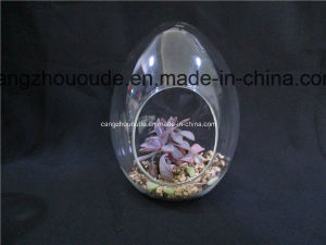 Handmade Blown Fashion Design Hanging Glass Vases pictures & photos