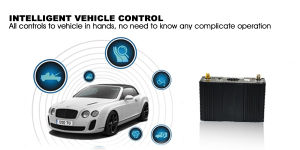 GPS Vehicle Tracker with Panic Button, Movement Alert pictures & photos