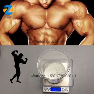 Weight Loss White Steroids Powder Testosterone Acetate Test Acetate pictures & photos